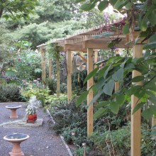 Custom Arbor – Somerset County – NJ